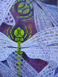 Dana's Dragonfly